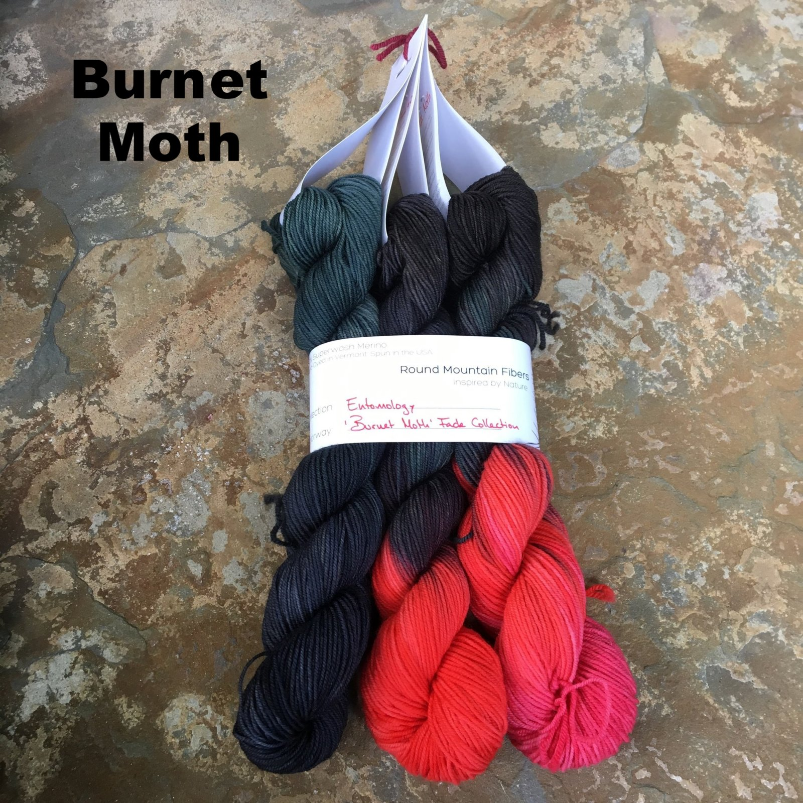 Entomology Fade Collection (Round Mountain Fibers)