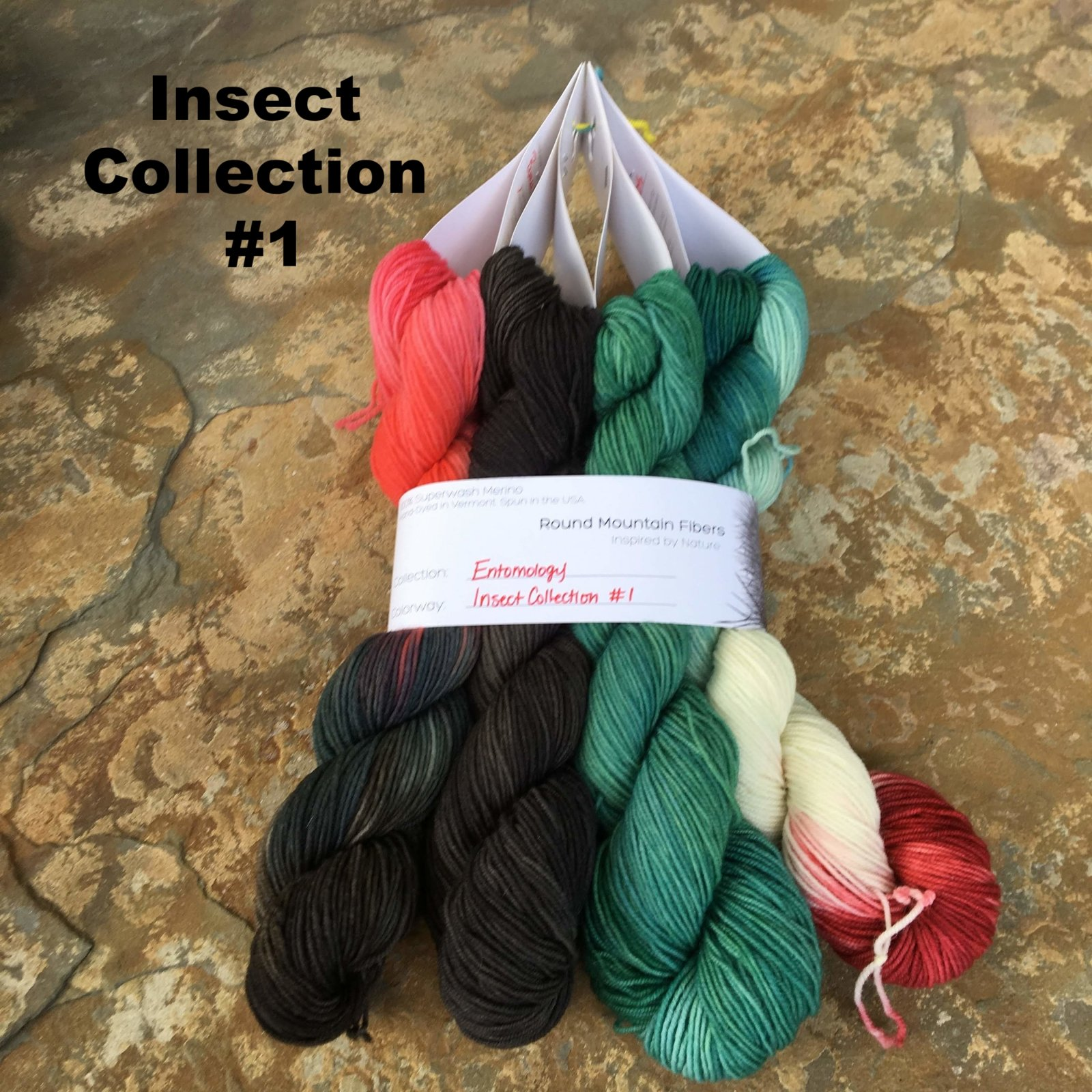 Entomology Insect Collection (Round Mountain Fibers)