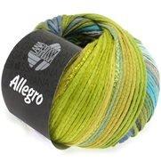 Allegro / Allegro Unito (Lana Grossa)