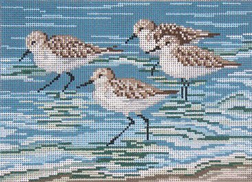 Sanderlings #13