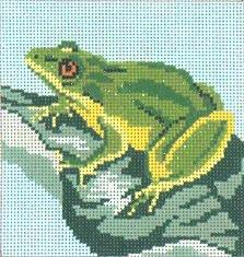 Frog on Leaf #13