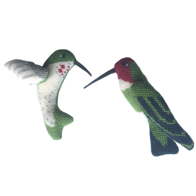 A Bird in Hand - Rivoli's Hummingbird