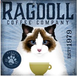 Coffee Co Ragdoll