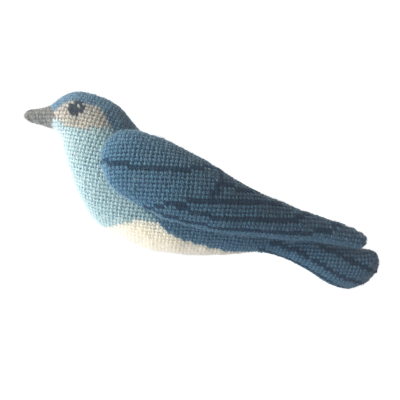 A Bird in Hand - Mountain Bluebird