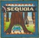 Sequoia Postcard #18