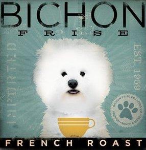 Coffee Co Bichon