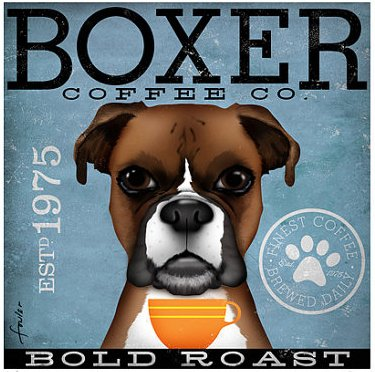 Coffee Co Boxer
