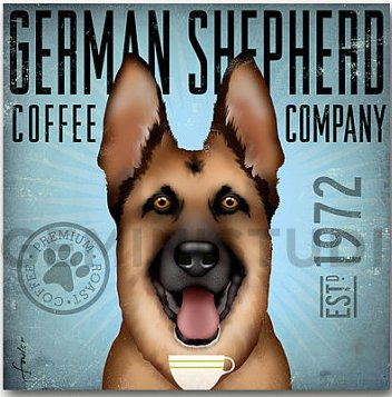 Coffee Co German Shepherd