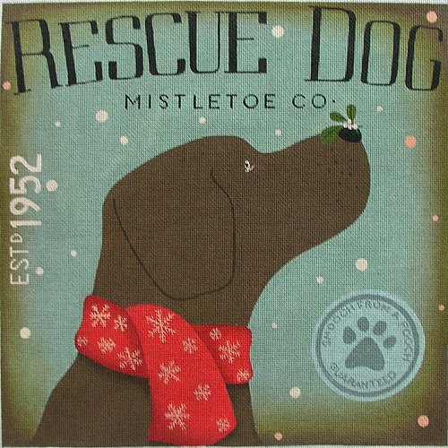Mistletoe Co Rescue Dog