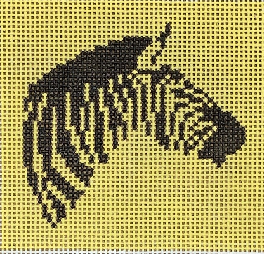 Zebra on Yellow