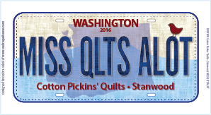 2016 License Plate MISS QLTS ALOT