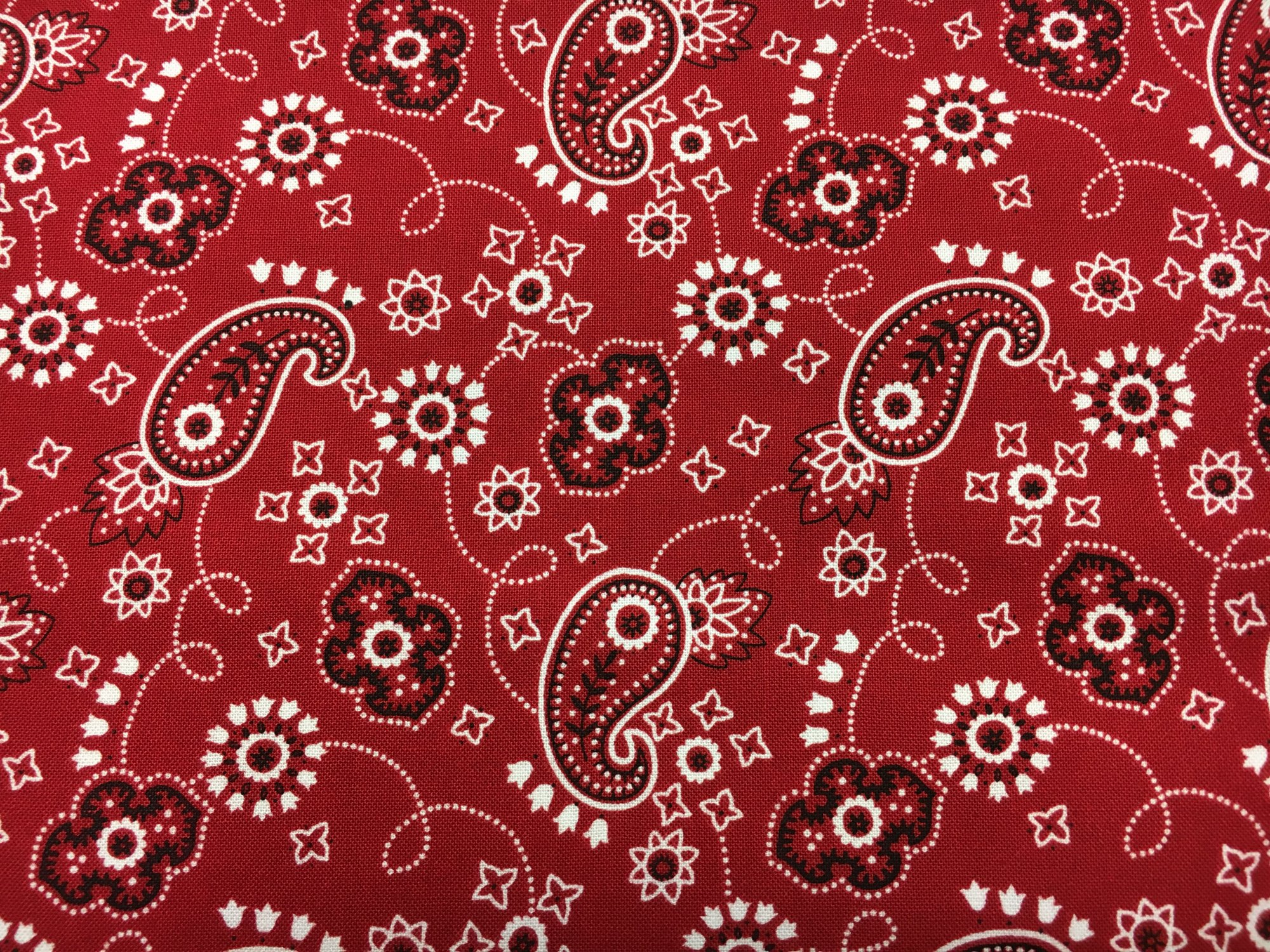 Blank Quilting; Bandanamania/Round Up fabrics