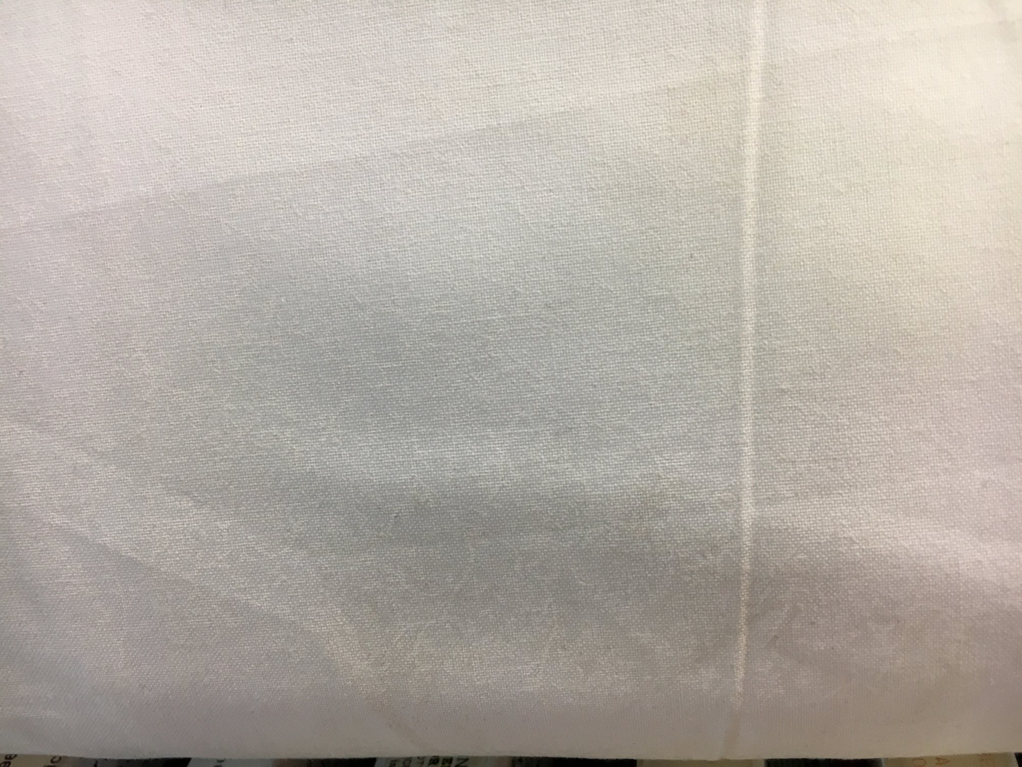 Benartex; 108 wide backing fabric; Delicate Vine Print