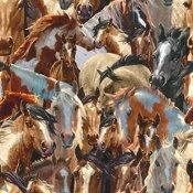 Mustang Meadows Horses