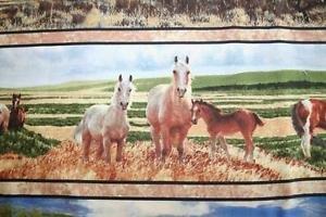 Mustang Meadows Horse border stripe
