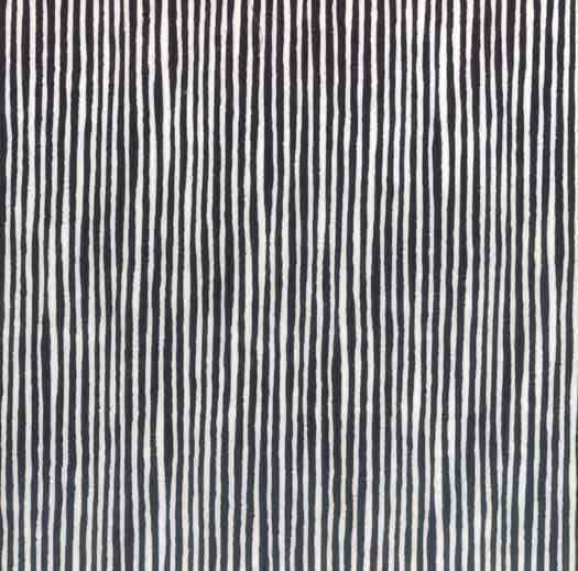 Raven Black and White Stripes