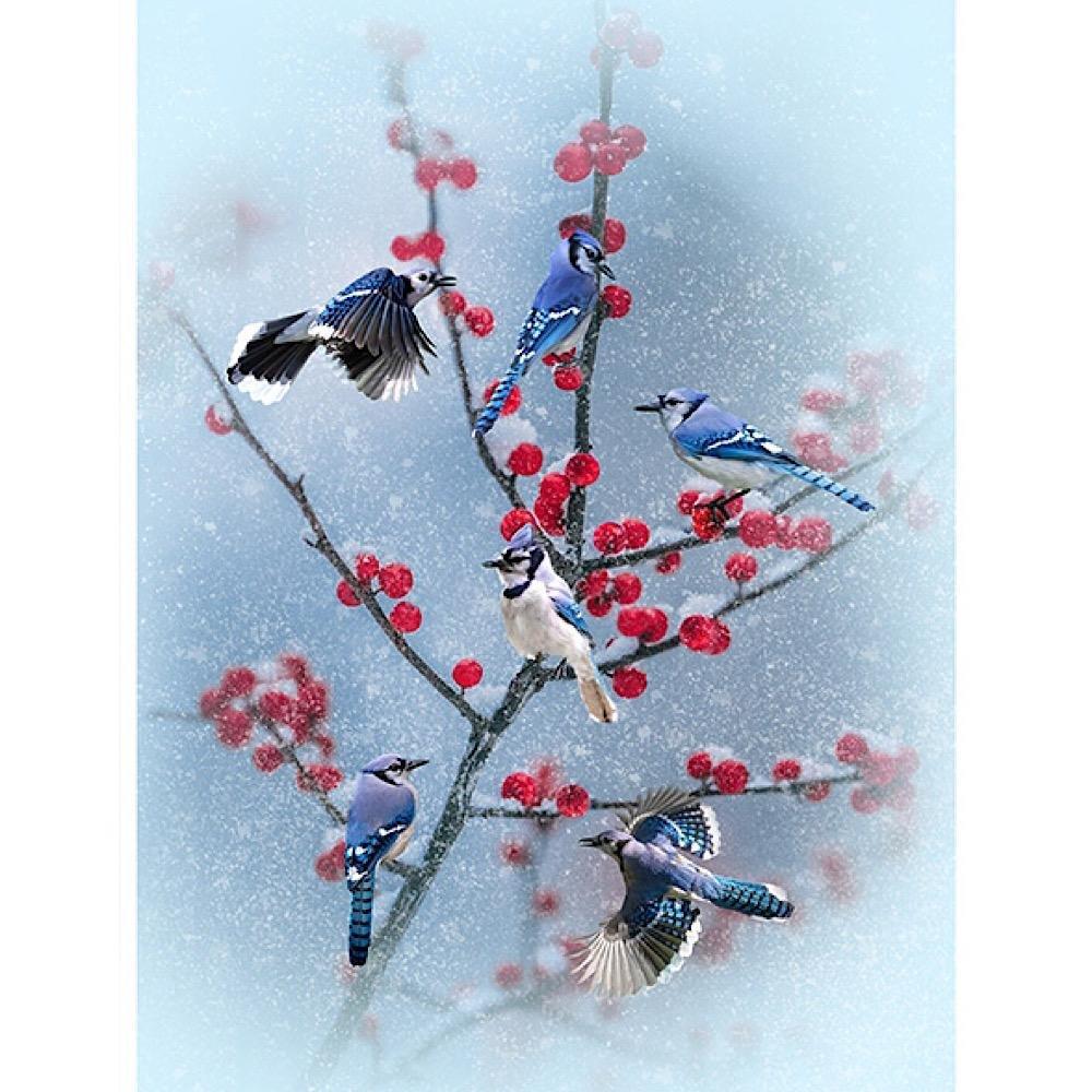 Winter's Wings Blue Jay Panel
