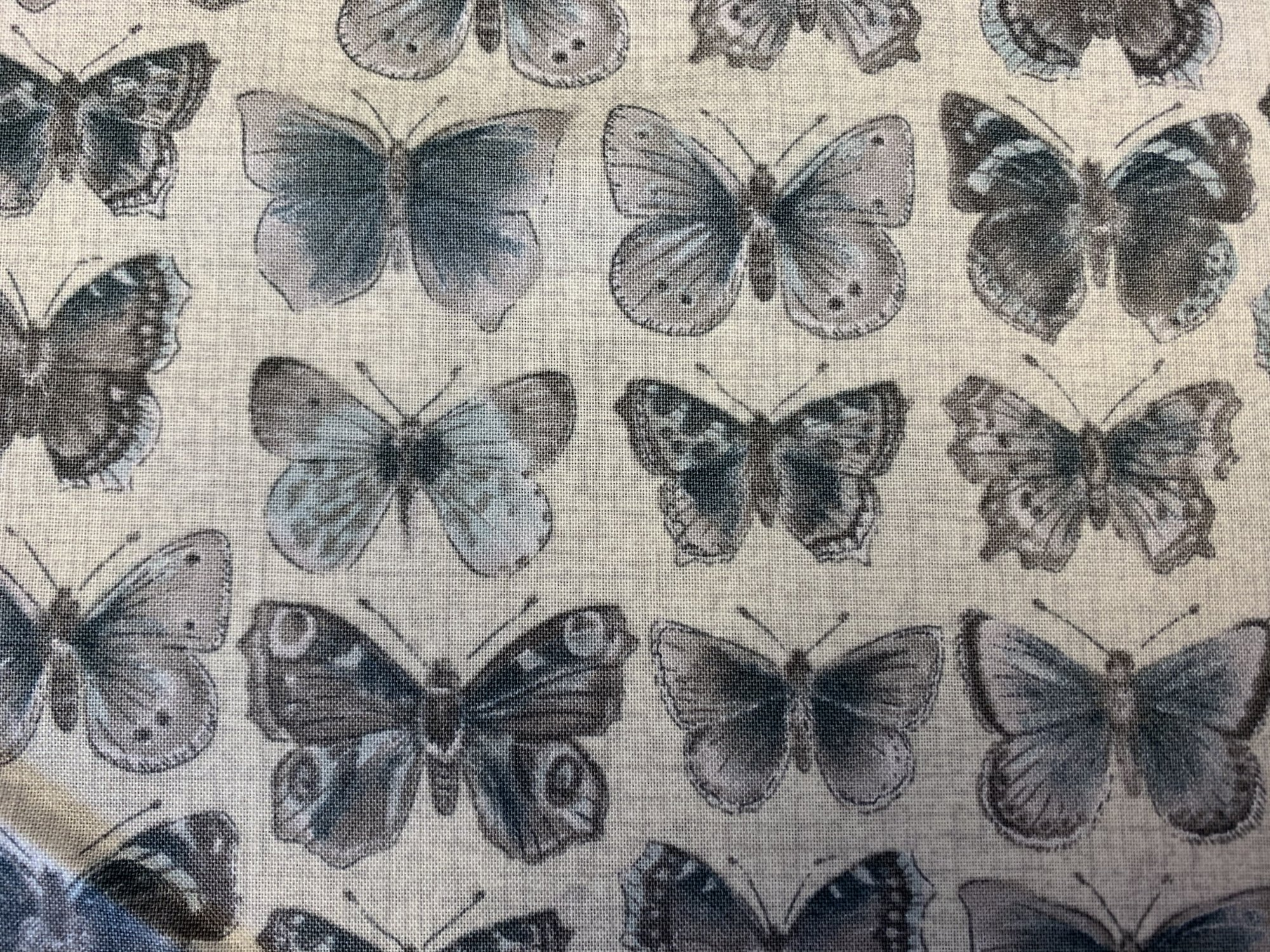Vintage Butterflies by Andover