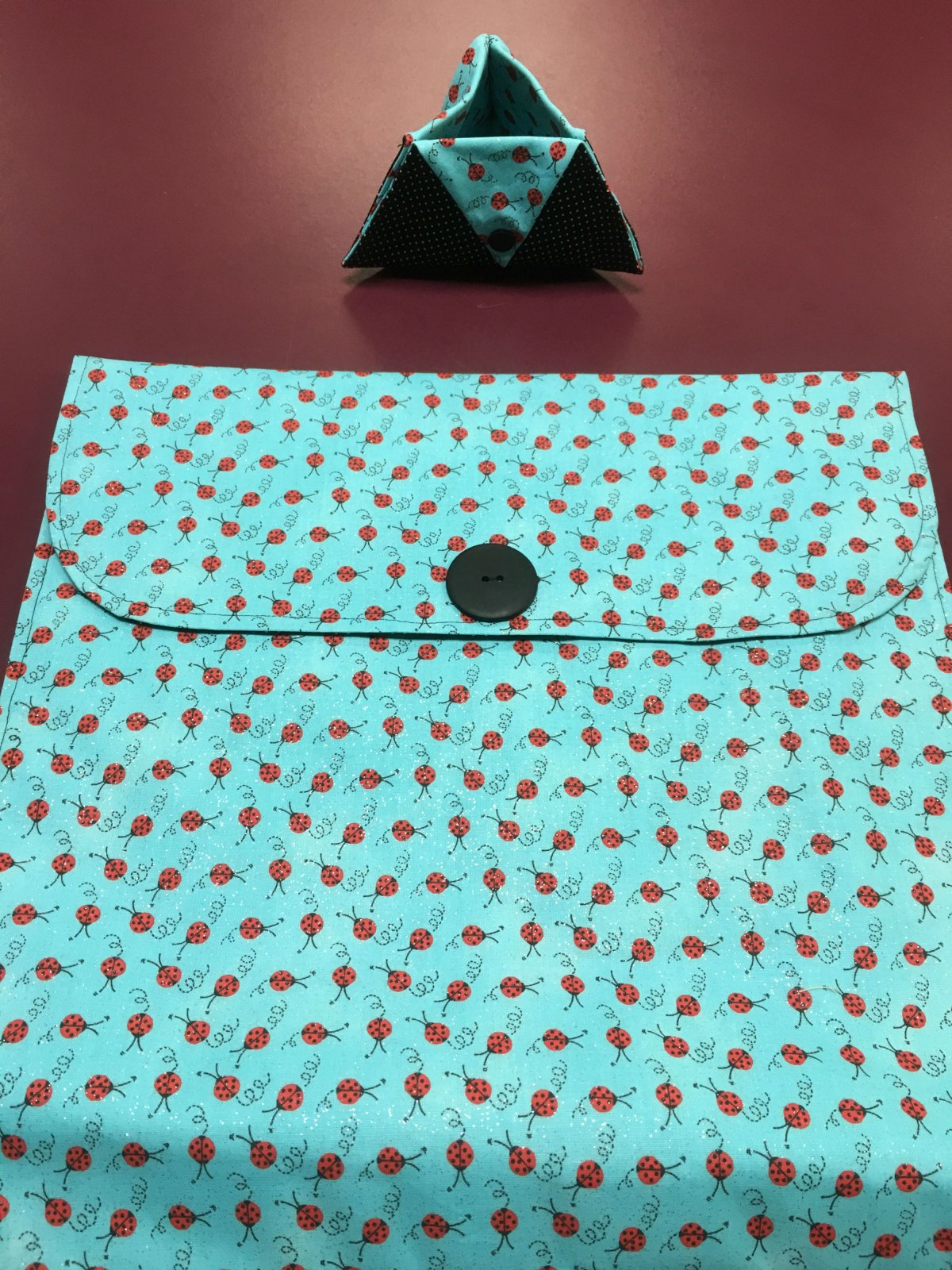 Project bag and ort bag - Blue with Ladybugs 14 x 13.25