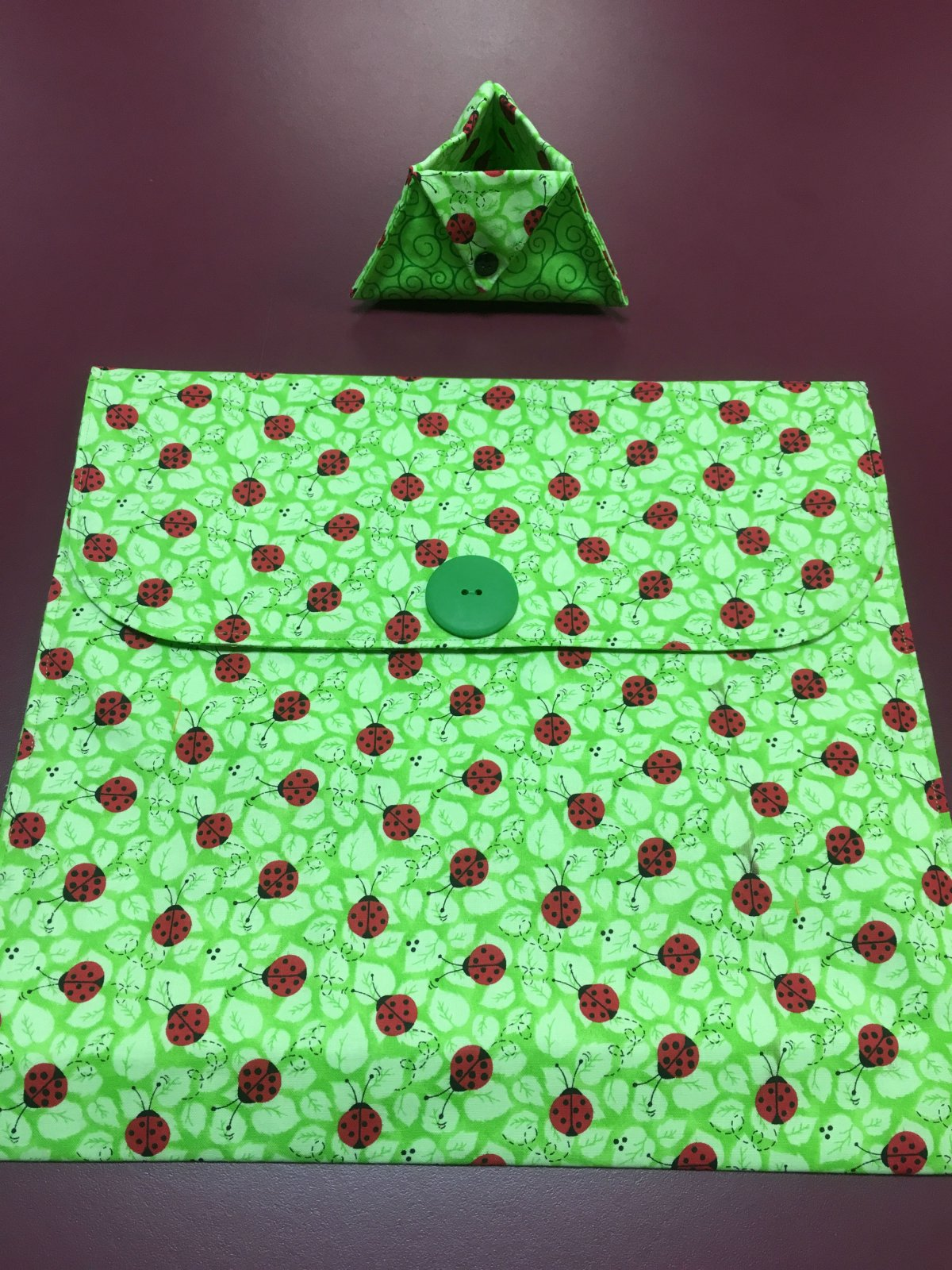 Project bag and ort bag - Green and Ladybugs 14 x 13.25