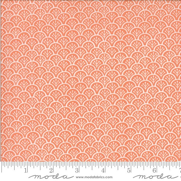 Chantilly Gerbera Rolling Hills by Fig Tree Co for Moda 20344-11