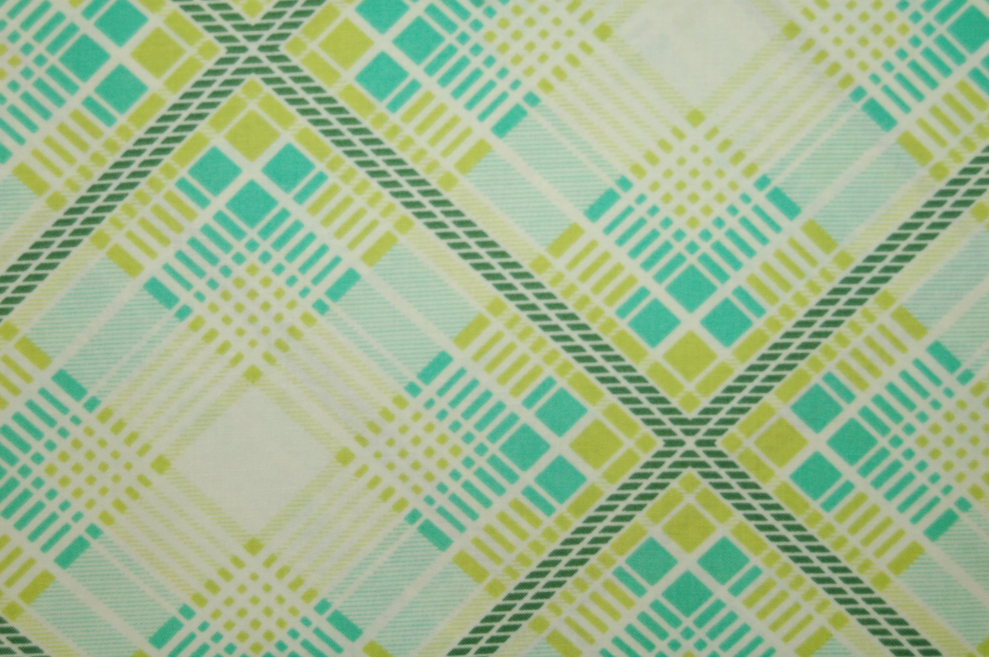 Up Parasol - Summer Plaid by Heather Bailey for Free Spirit