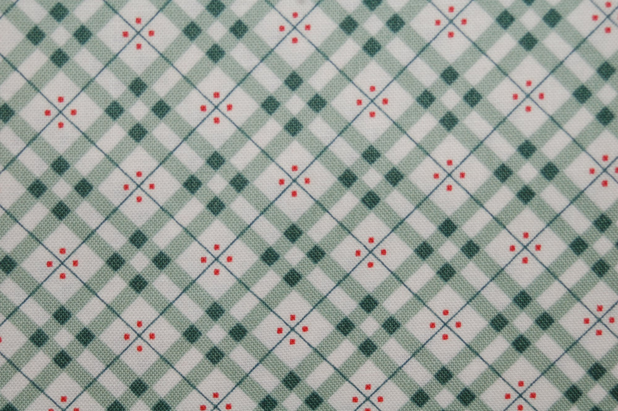 Eastham - Fine Plaid (Juniper) from Denyse Schmidt for Free Spirit Fabrics