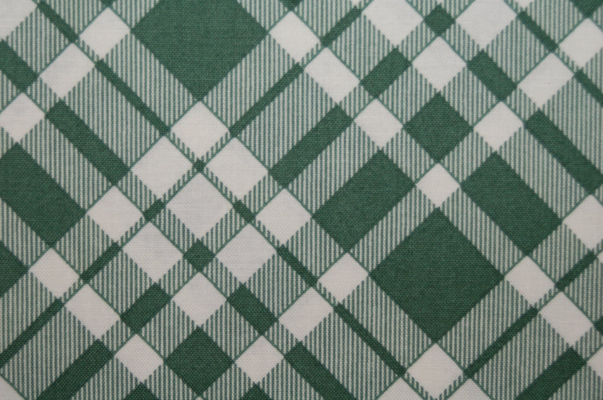 Eastham - Plaid (Juniper) from Denyse Schmidt for Free Spirit Fabrics