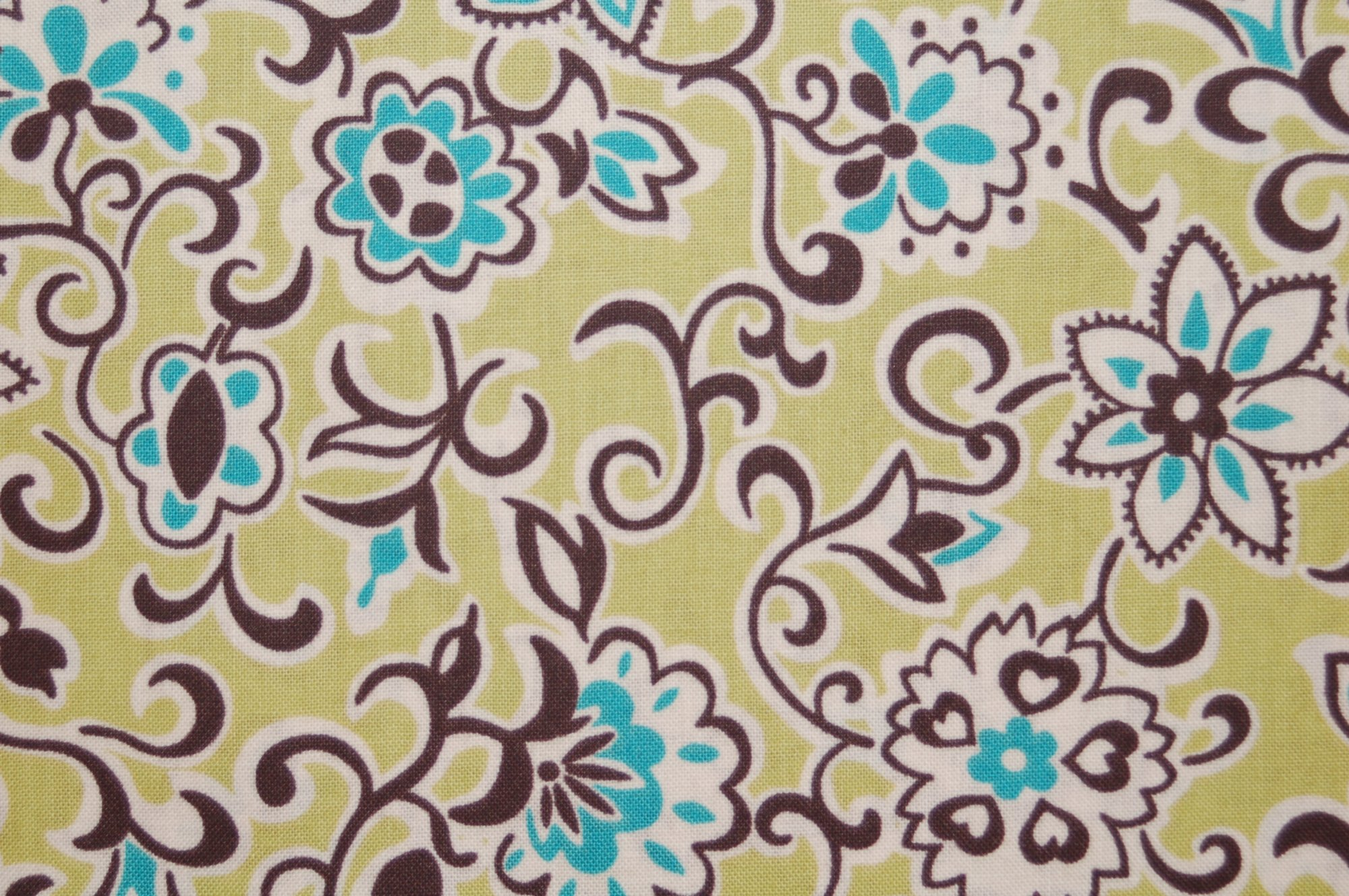 Ansonia - Floral Paisley from Denyse Schmidt for Free Spirit