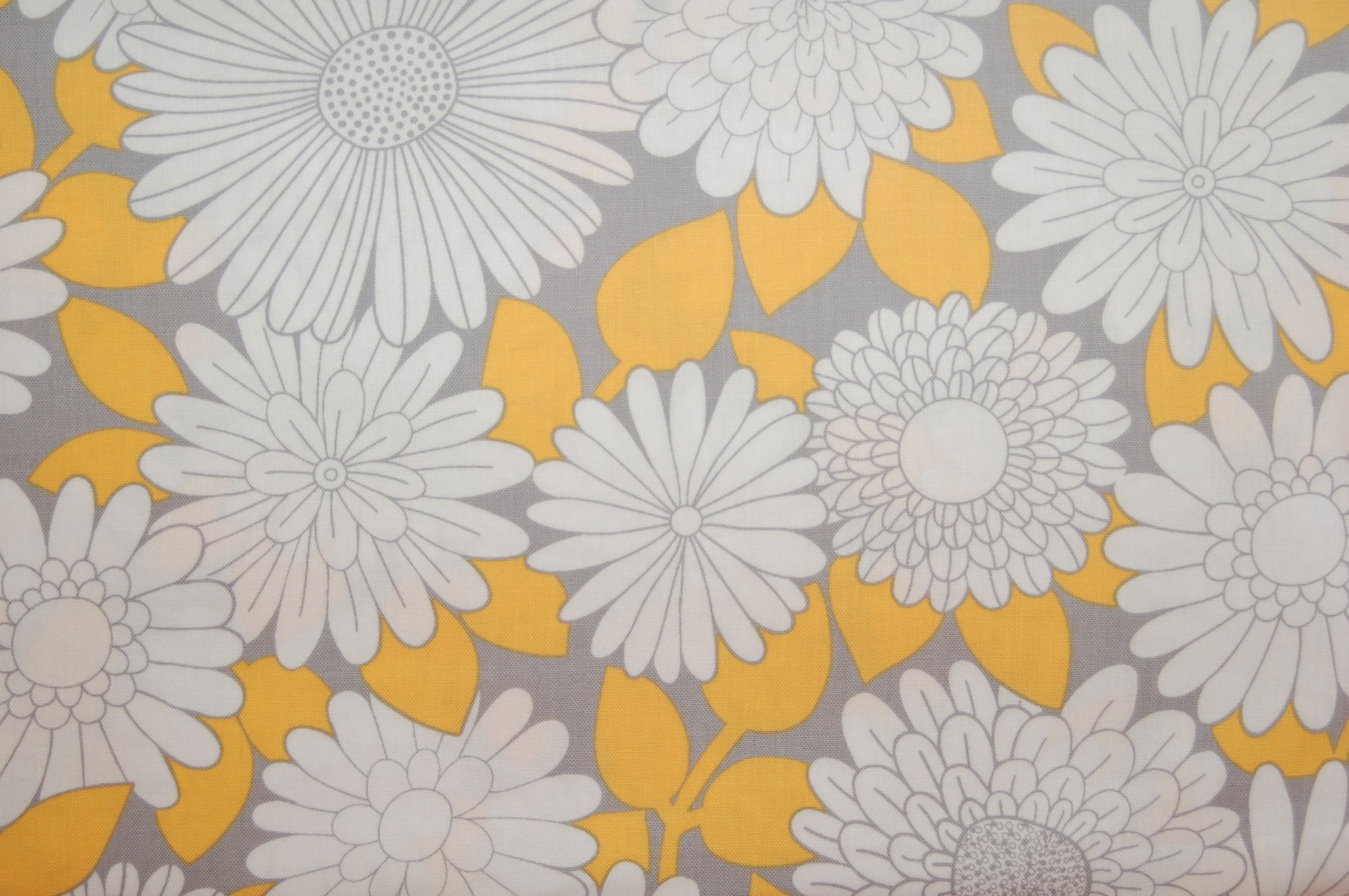 Cruzin' - Daisies and Asters from Barbara Jones and Henry Glass Fabrics