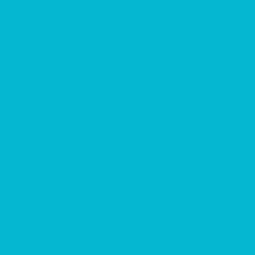 Superior Solids (Turquoise)