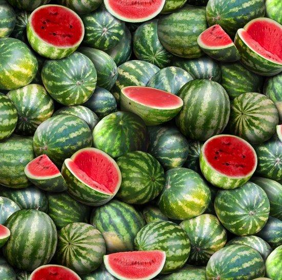 Food Festival - Watermelon