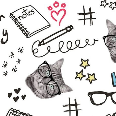 Cats Rule - Clever Kitties