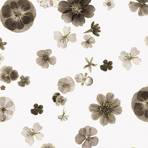 Floral Impressions - Pressed Flowers (Ivory/Metallic)