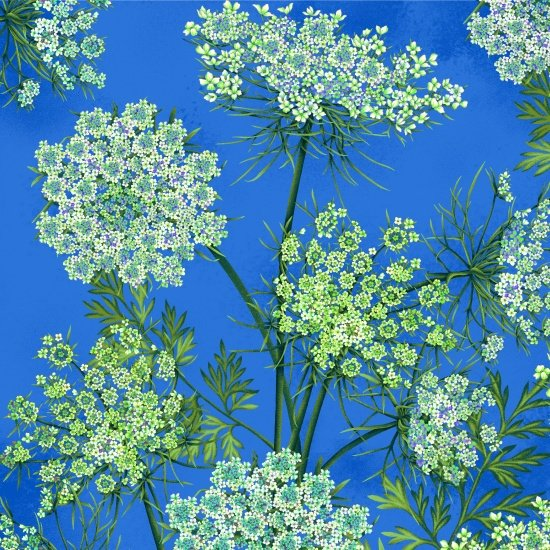 Botanic Blooms - Queen Anne's Lace (Med. Blue)