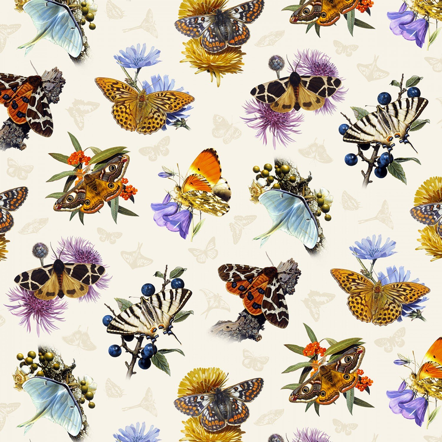 Butterflies and Moths (Cream)