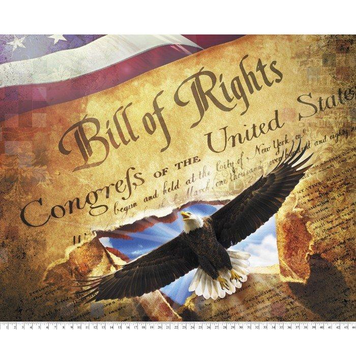 Bill Of Rights 36 Panel - DIGITAL PRINT
