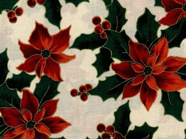 Merry Christmas - Poinsettia Metallic (Cream)