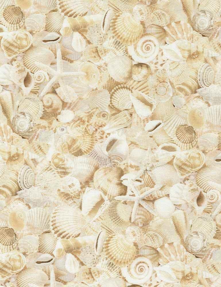 *Packed Seashells (Natural)