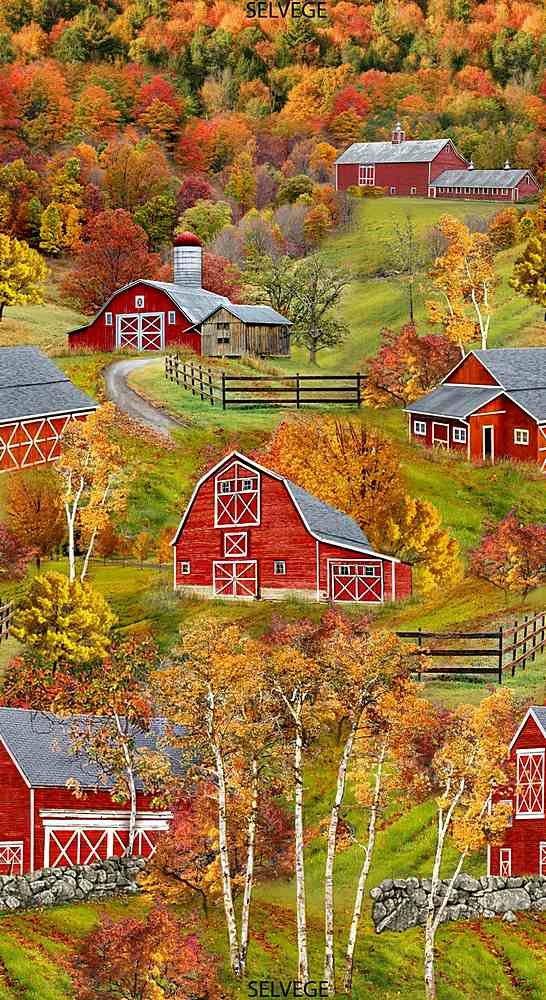 Red Barns - 24 Panel