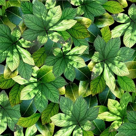 Garden Leaves (Green)