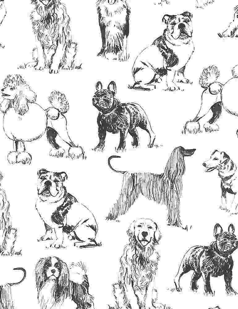 *Sketched Realistic Dogs (White)