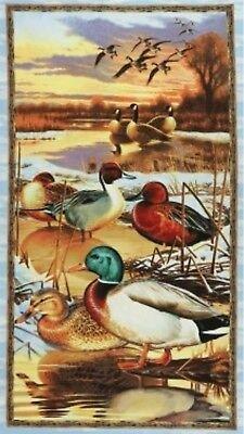 Duck, Duck, Goose - 23.5 Panel