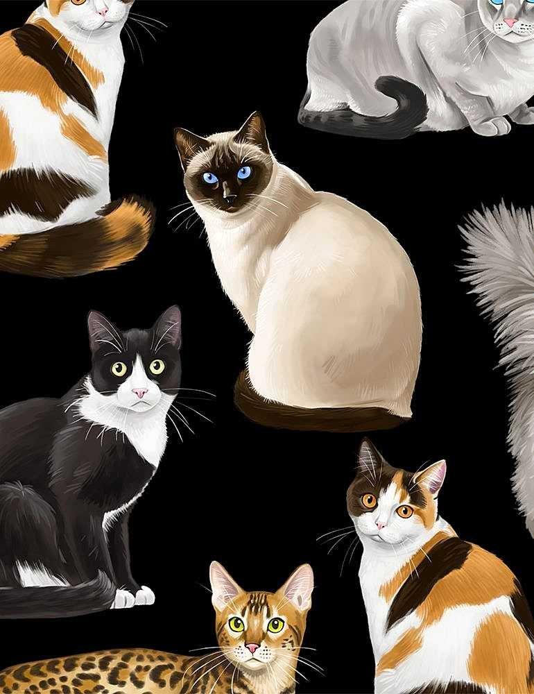 *Assorted Realistic Cats (Black)