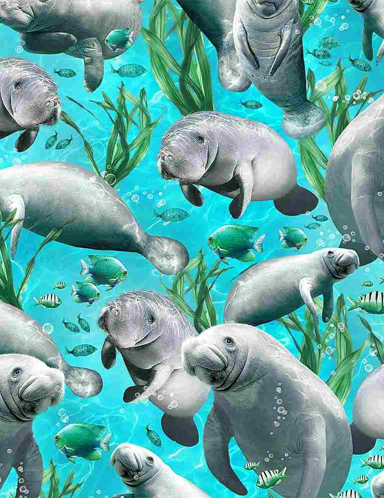 *Swimming Manatees (Blue)