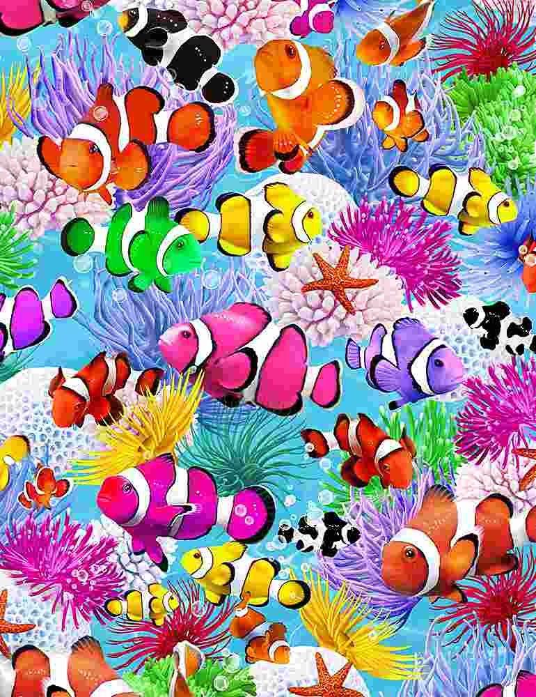 *Swimming Clown Fish (Multi)