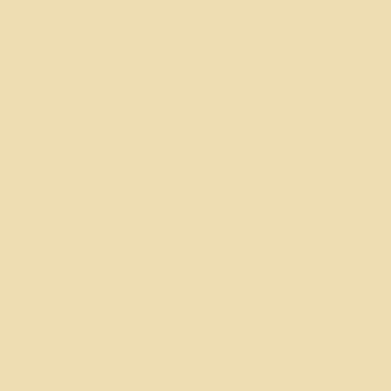CS-10-ALMOND Century Solids by Andover Fabrics