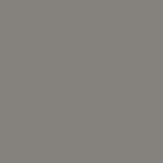 CS-10-TRUFFLE Century Solids by Andover Fabrics
