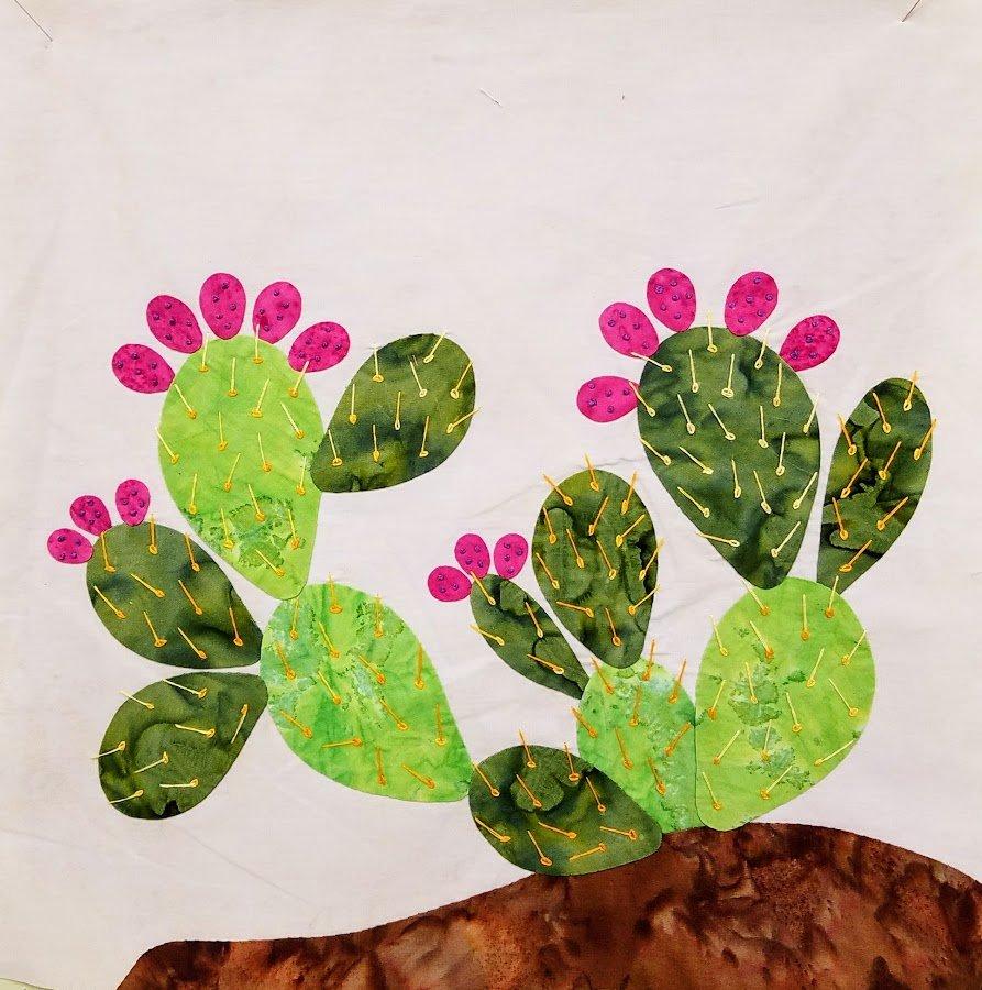Cactus Month 4