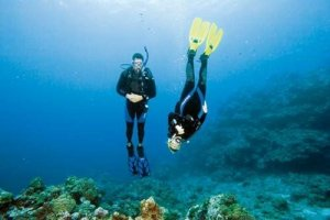 That S What The Padi Advanced Open Water Diver Course Is All About You Don T Have To Be Take It Designed Advance Your Diving